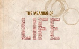 The_meaning_of_life